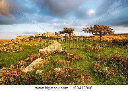 Combestone Tor In Devon
