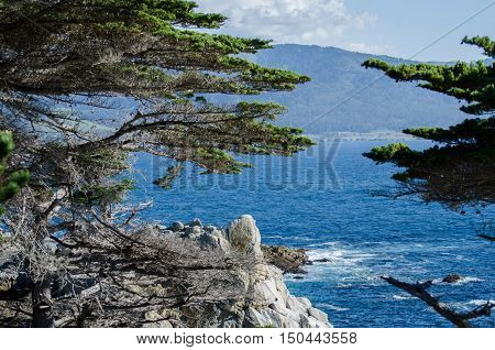 The Lone Cypress   Seen From The 17 Mile Drive In Pebble Beach Of  Monterey Peninsula. California.