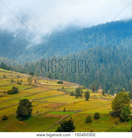 Beautiful autumn mountain landscape with mist and animal corral at dawn