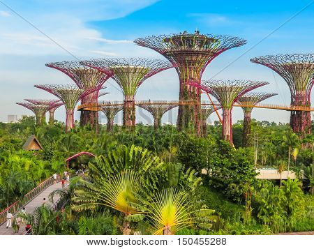 SINGAPORE, REPUBLIC OF SINGAPORE - JANUARY 09, 2014: Singapore city skyline. View of Supertree Grove, Gardens by the Bay, Singapore