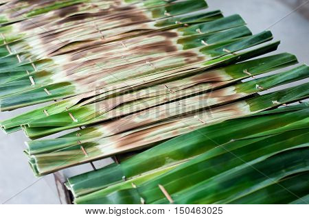 Khanom jaakNipa palm dessert Thai sweetmeat made of flour coconut and sugar wrapped in leaves and then grilled