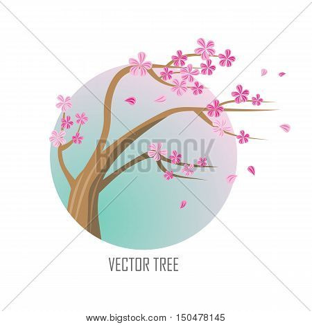 Vector tree. Sakura isolated on white. Full blossom of traditional asian cherry tree, with falling petals. Japanese cherry, Prunus serrulata. Cherry blossom. National flower of Japan. Pink flowers