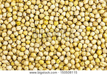 background made of raw yellow chickpeas seeds