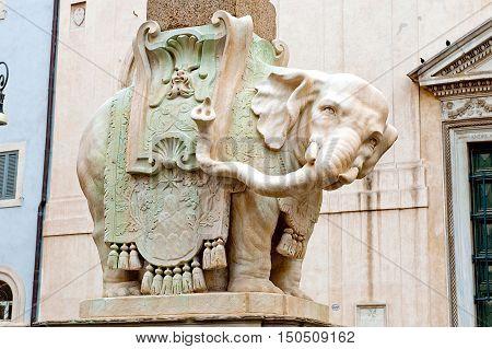 Elephant at Piazza della Minerva in Rome Italy