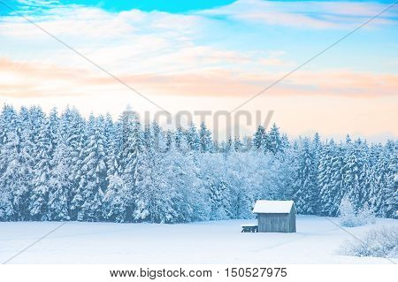 Early morning winter rural landscape with snow-covered forest and pastel shades colored dawn sunrise sky