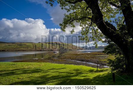 A tree casts shadows on the grass beside the beautiful calm waters of Loch Harport at Carbost Isle of Skye Scotland with reflections of a sailing boat and the hills beyond and the Cuillin mountain range in the distance