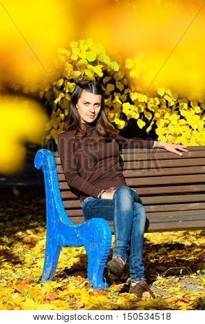 Attractive young woman sitting on brown wooden bench in beautiful park. She is looking stright at camera. Golden autumn foliage around. Girl wears blue jeans and brown turtleneck sweater. Yellow dominates in the picture.
