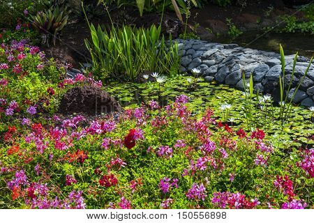 Daylight scene of a spanish park with a lot of multicoloured flowers, some decorative rocks and a little pond with waterlillys. It contains also a lot of green vegetation.