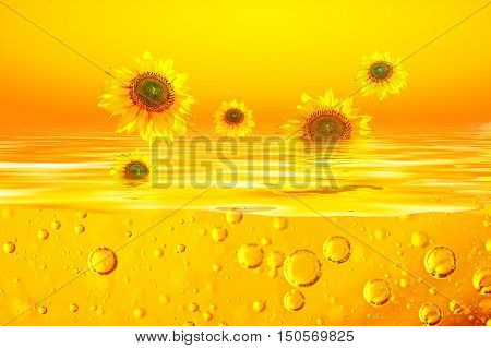 Sunflower oil is with Sunflowers of on surfaces of a yellow liquid and air bubbles in an orange liquid. Background for sunflower oil.