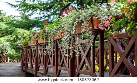 A Flowery Balcony In A Park, Georgia