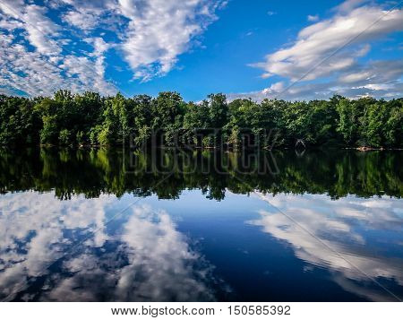 a forest treeline reflections in catawba river