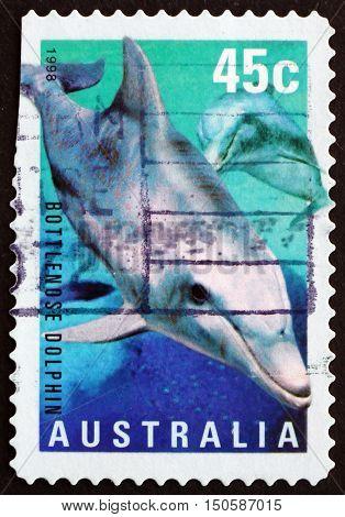 AUSTRALIA - CIRCA 1998: a stamp printed in Australia shows Bottlenose Dolphin Tursiops circa 1998