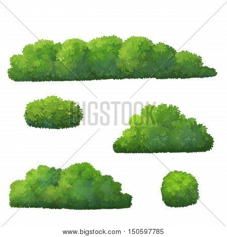 tree  or bush for cartoon isolated on white background