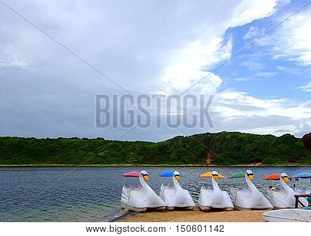 Swan paddleboats waiting at the Arituba lake