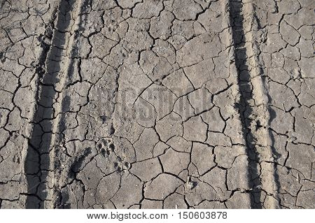 close up wheel track on dirt soil texture