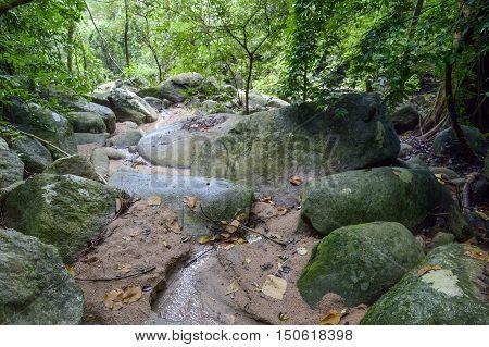 chantathen forest at Bang Phra, Sriracha, Chonburi, Thailand