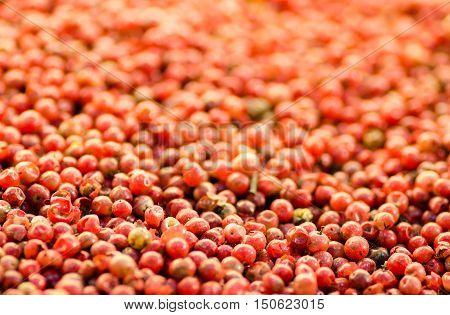 Bright red peppercorn on asian bazaar. Shallow depth of field