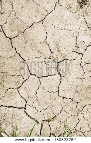 Dry Mud Desert Background Texture