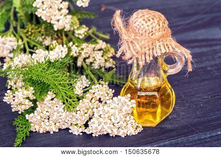 Essential yarrow oil and flower on dark blue wooden background.