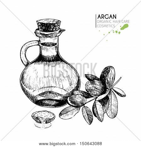 Vector set hair care ingredients. Organic hand drawn elements. Argan nuts branch bottle oil. Use for cosmetic package shop store products spa salon wellnes program procedure skin hair care