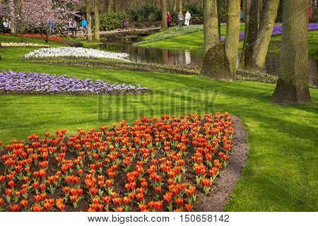 LISSE, SOUTH HOLLAND/ THE NETHERLANDS - APRIL 2,2016: Keukenhof, one of the world's largest flower gardens, is is very nice in spring