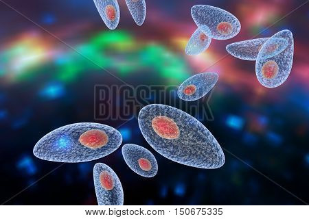 Toxoplasma gondii on colorful background. Protozoan which is transmitted from cats and other animals and causes toxoplasmosis especially dangerous for pregnant women. 3D illustration