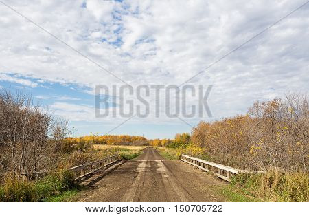 Dirt road over wooden old bridge surrounded by forest of trees in rural countryside autumn landscape