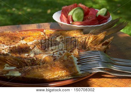Family picnic in the open air in the forest. On a tree stump applied smoked fish. Photographed in natural light selective focal length. without people