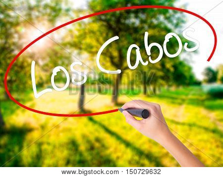 Woman Hand Writing Los Cabos With A Marker Over Transparent Board