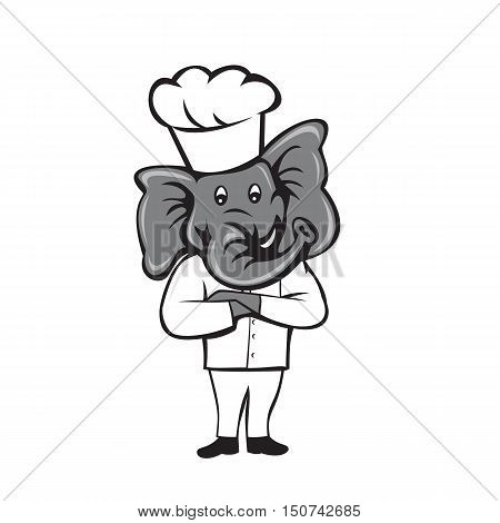 Illustration of a chef elephant wearing chef's hat standing with arms crossed viewed from front set inside on isolated white background done in cartoon style.