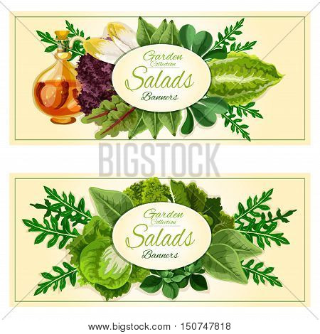 Salad greens and vegetables banners set with green sappy leaves of lettuce, cabbage, spinach, arugula, watercress, iceberg, endive, chard, kale with infused olive oil with chilli
