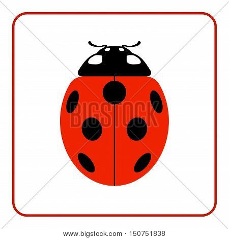 Ladybug small icon. Red lady bug sign isolated on white background.  Vector illustration