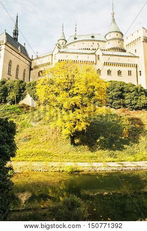 Bojnice castle in Slovak republic. Yellow autumn trees. Cultural heritage. Seasonal scene. Beautiful place. Vibrant colors. poster