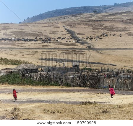 View Of Small Village In Ngorongoro National Park In Typical Local Architecture With People