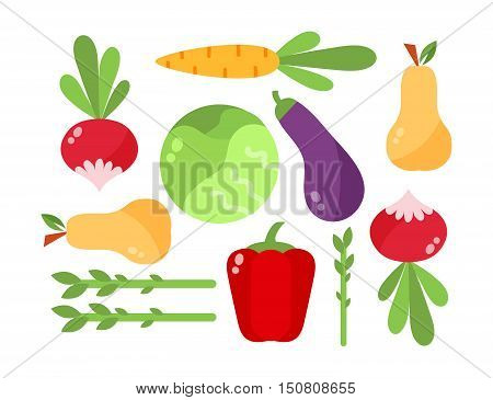 Vegetables vector set vegetarian organic diet isolated food. Color vegan product vegetables delicious juicy farm dietetic food. Fresh cabbage collection agriculture health group vegetables.