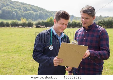 Farmer And Vet Having Discussion In Field Of Sheep