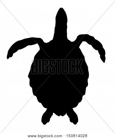 Abstract vector illustration of a turtle silhouette
