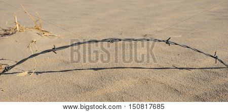 Arching Strand Of Barbed Wire