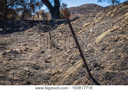 Line Of Barbed Wire After Fire