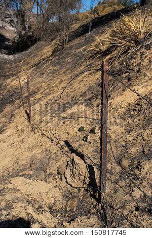 Fence remains after wildfire scorches surrounding area in southern California.