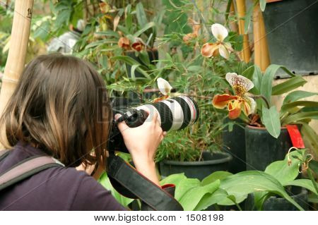 Photographer In Tropic Garden