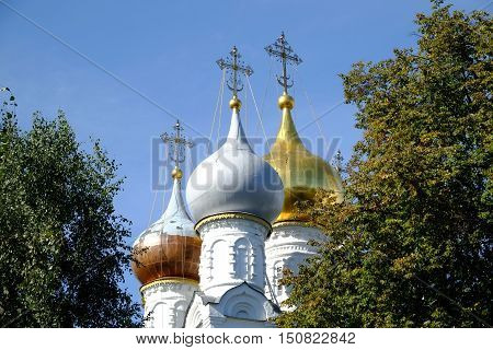 Russian church with golden cupolas looks through trees branches over clear blue sky