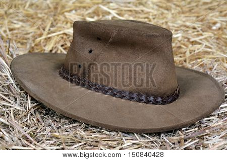 Australian hat on hay in a barn.