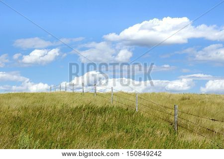 horizontal image of a barbwire fence going up a hill and disappearing over the top out of site under a beautiful blue sky with clouds floating by in the summer time.