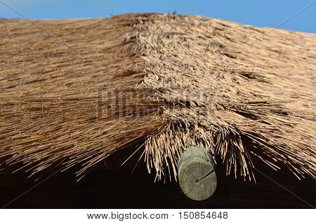 Thatching Straw roof with blue sky abstract background texture.