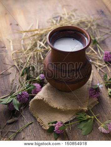 Milk in a clay jug on rustic wooden table with grasses and clover.
