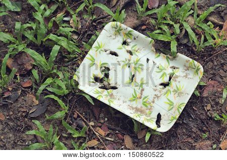 Natural Plant Fiber Food Box On The Soil Texture