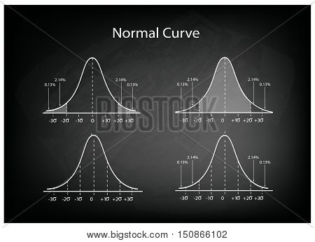 Business and Marketing Concepts Illustration Set of Gaussian Bell Curve or Normal Distribution Curve on Black Chalkboard Background.