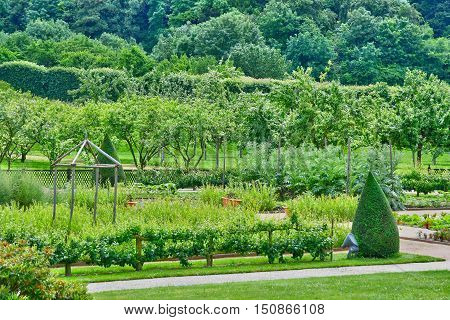 Saint Martin de Boscherville, France - june 22, 2016 : the Saint George's abbey garden in Seine Maritime.