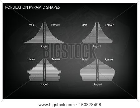 Population and Demography Illustration Set of 4 Types of Population Pyramids Chart or Age Structure Graph on Black Chalkboard Background.
